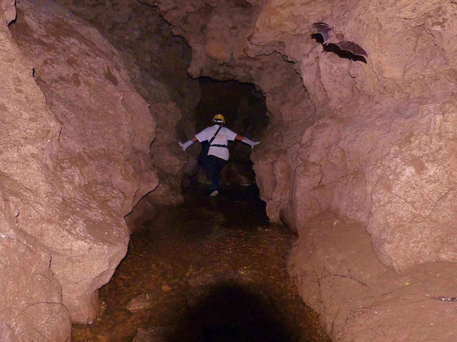 Cavernas de Licamancha
